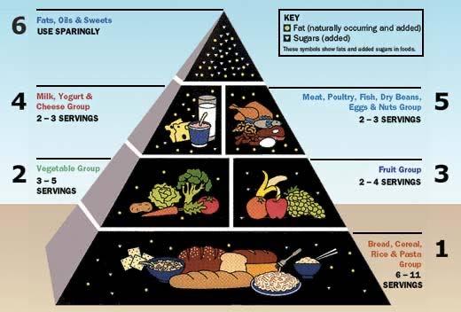 SAD food pyramid and fasting.